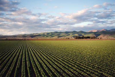 Tackling the environmental footprint